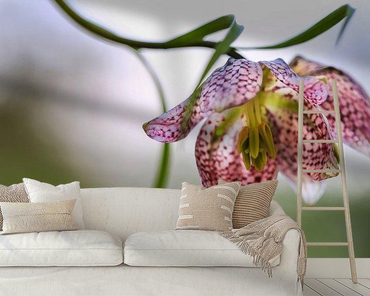 Impression: Fritillaria meleagris sur Anneke Hooijer