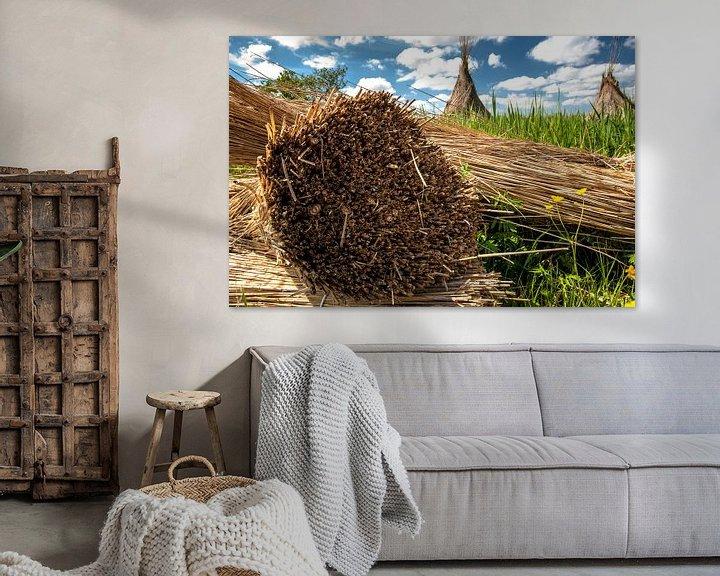 Sfeerimpressie: Afgesneden riet in Nederlands landschap van Fotografiecor .nl