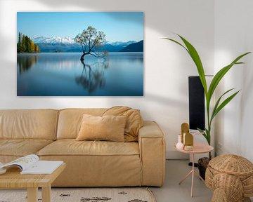 That wanaka tree | Lake Tekapo van Lorenzo Visser