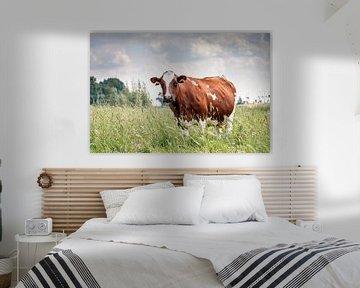 Bruine koe in het hoge gras van Dennis van de Water