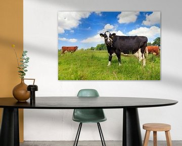 Koeien in de wei in Holland von Dennis van de Water