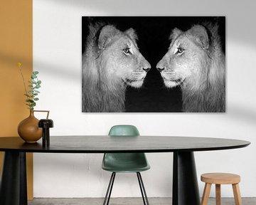Löwen Männchen Zwillinge sw 18163