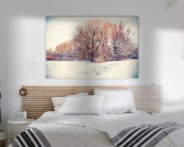 winter park ( Rijswijk)  van Ariadna de Raadt-Goldberg