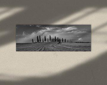 Monochrome Tuscany in 6x17 format, Agriturismo I Cipressini van Teun Ruijters