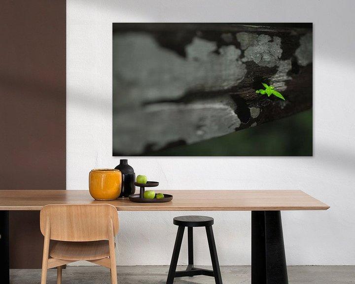 Sfeerimpressie: leaf van Jelle  Beuzekom