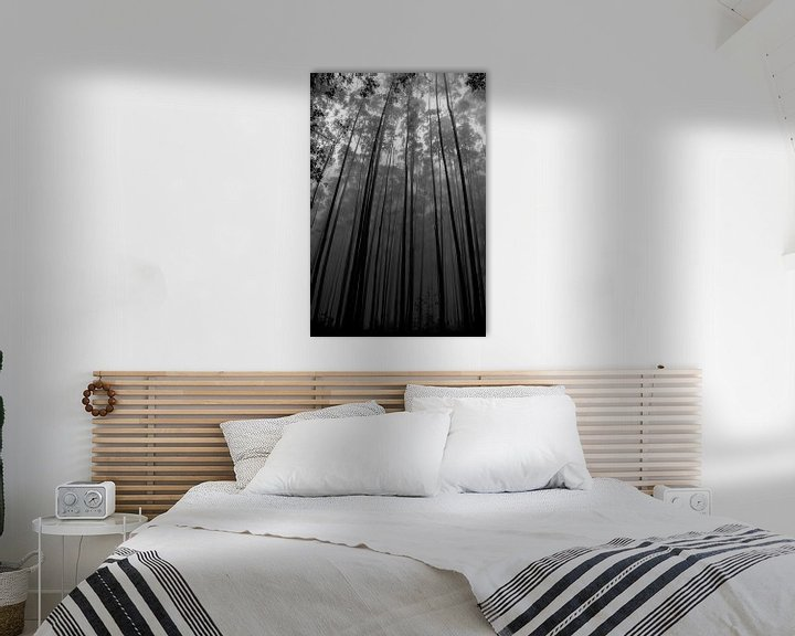 Sfeerimpressie: Hoge bomen van Jelle  Beuzekom