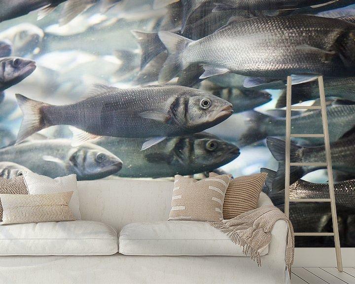 Sfeerimpressie behang: School vissen van Capture the Light