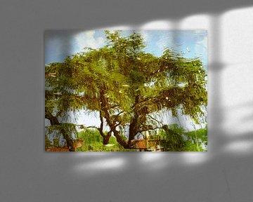 Tree Magic 189 van MoArt (Maurice Heuts)