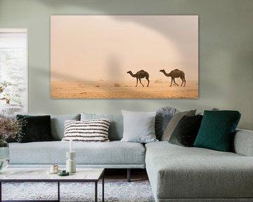 Woestijn #1 van Herwin Wielink