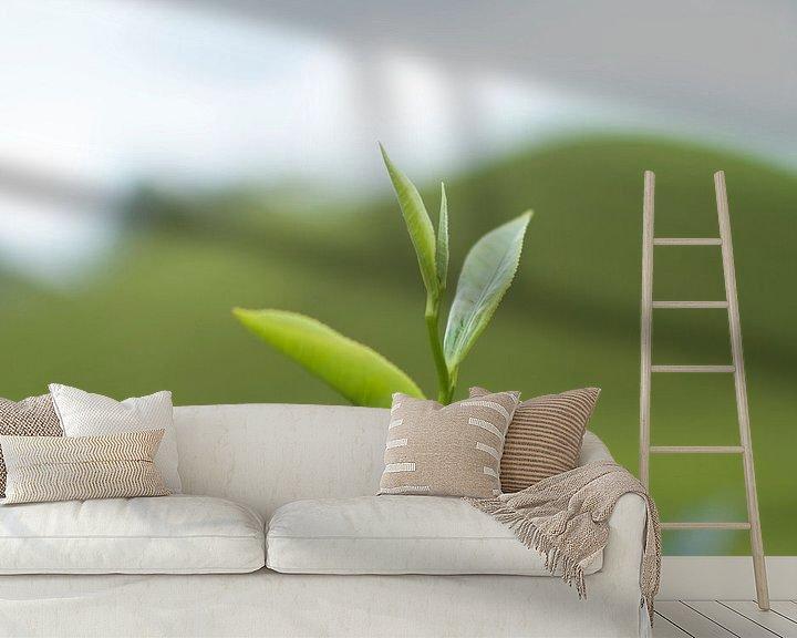 Sfeerimpressie behang: Thee plant van Jelle  Beuzekom