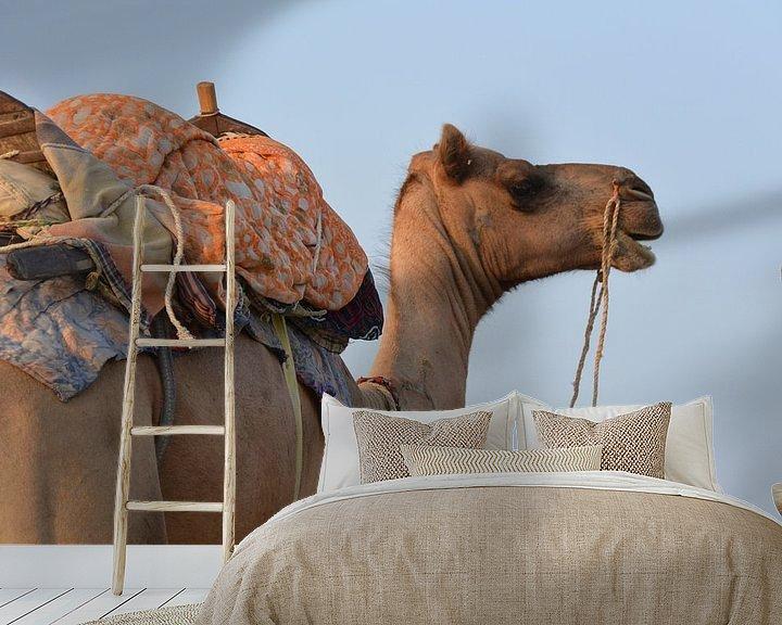 Sfeerimpressie behang: Kameel van Jelle  Beuzekom