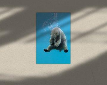 duiken en spelen van Yvonne van Leeuwen