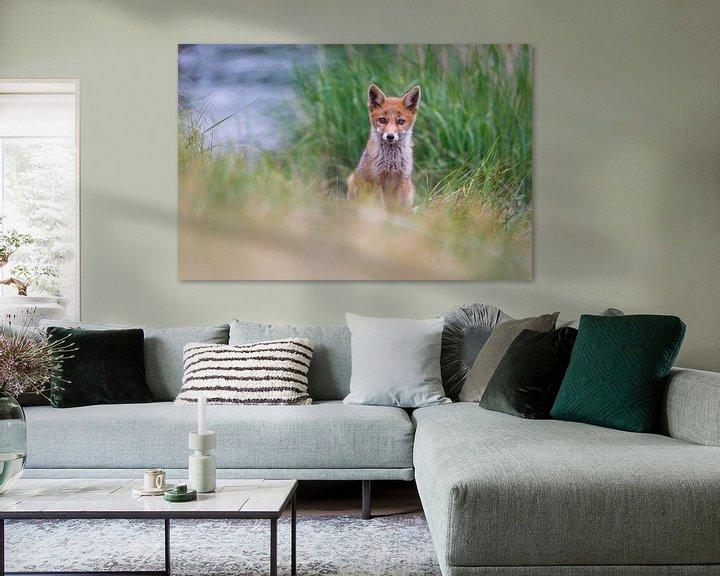 Sfeerimpressie: jonge vos van Pim Leijen