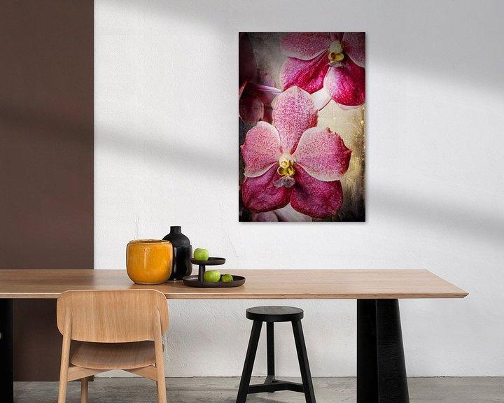 Sfeerimpressie: Vanda orchidee 3036A van Rudy Umans
