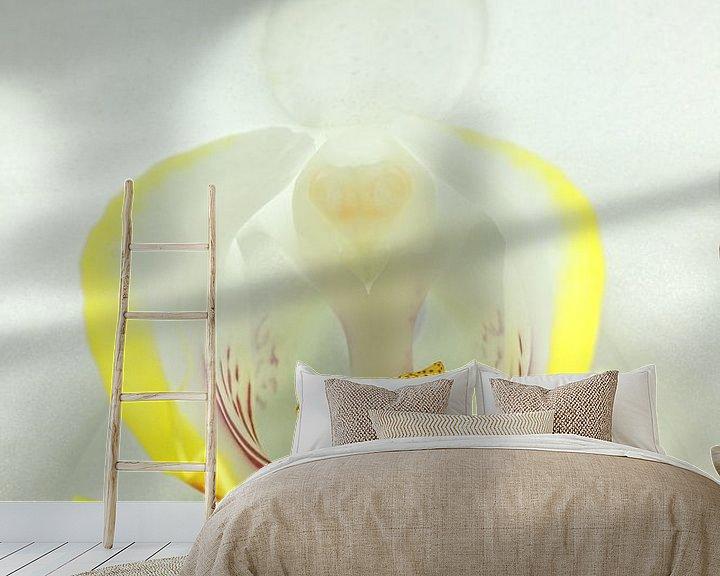 Sfeerimpressie behang: Witte Orchidee-3 van Rudy Umans