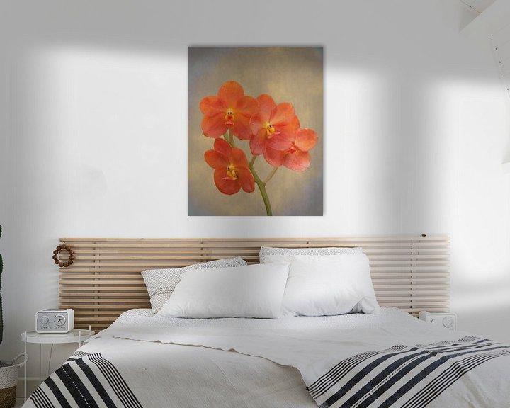 Sfeerimpressie: Rode scharlaken orchidee op grunge van Rudy Umans