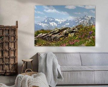 Uitzicht vanaf een wandelpad op de Jauffenpas, Zuid-Tirol van Jani Moerlands