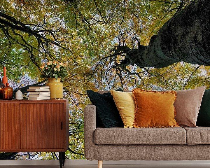 Sfeerimpressie behang: Talking trees van Rob De Jong