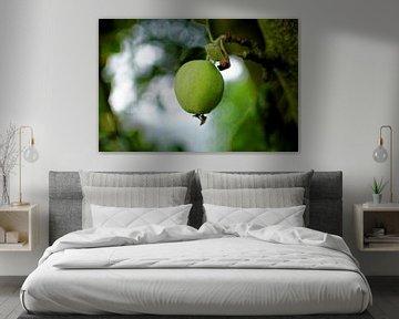 Apple von Dawid Baniowski