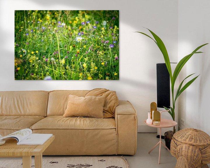 Sfeerimpressie: Bonte bloemenweide met margriet van Coen Weesjes
