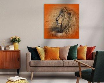 Weißer Löwe Portrait 4892 thula-art von Barbara Fraatz