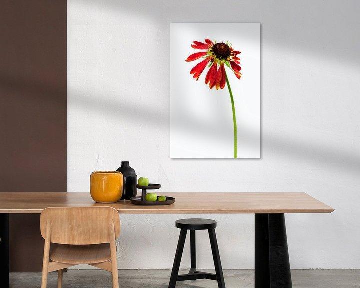 Sfeerimpressie: Zonnehoed in wit van Lex Schulte