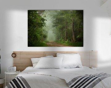 Forêt d'éveil sur Roelie Steinmann