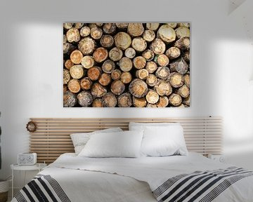 Houtstapel van boomstammen