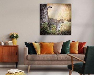 Leopard, Serengeti, Tanzania von Leon van der Velden