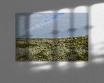 Foto van de duinen van Nederland te St Maartenszee van Peter Buijsman