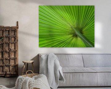 Groen von Odette Kleeblatt