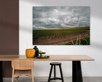 Donkere wolken boven een dijk en weiland in Nederland van Jolien Kramer