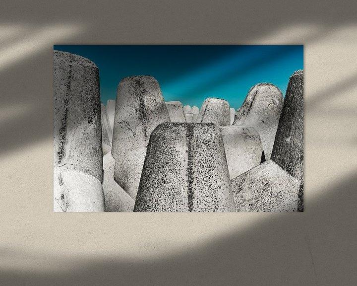 Sfeerimpressie: Tetrapods van rosstek ®