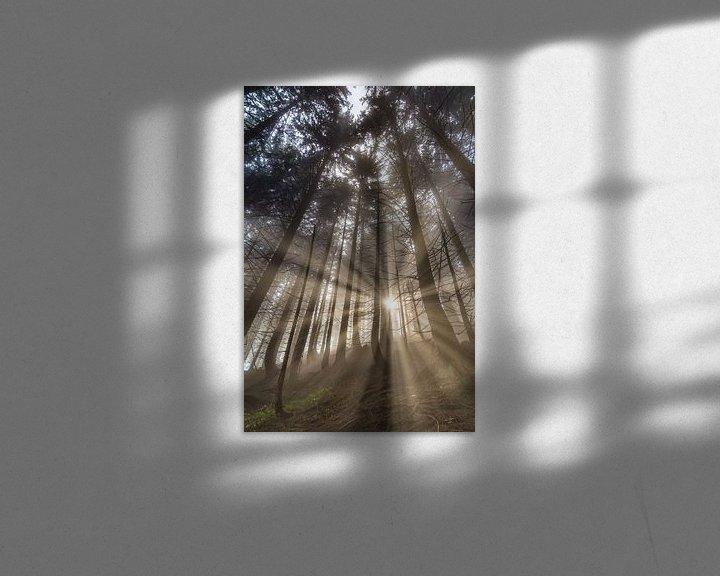 Sfeerimpressie: Sunrise in the Mountainforest van Manfred Schmierl