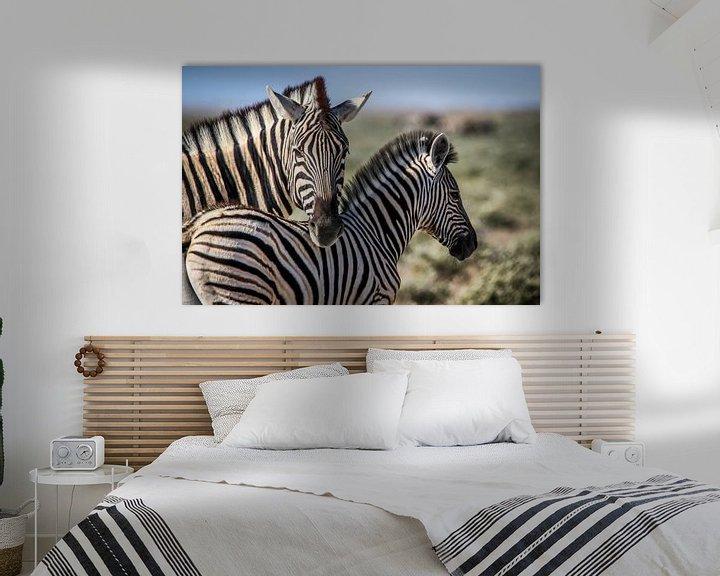 Sfeerimpressie: Schitterende Zebra's op Afrikaanse vlaktes van Original Mostert Photography
