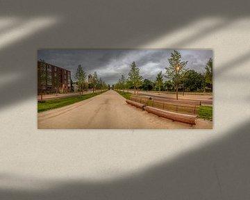 Greune Luiper Mestreech - De Groene Loper Maastricht van Teun Ruijters