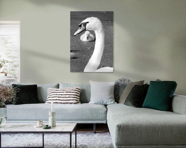 Sfeerimpressie: Liefde ...Zwaan met jong van Anja Kok
