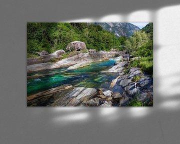 On the green river van Ursula Di Chito