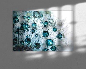 Pusteblume blauer Schein von Julia Delgado
