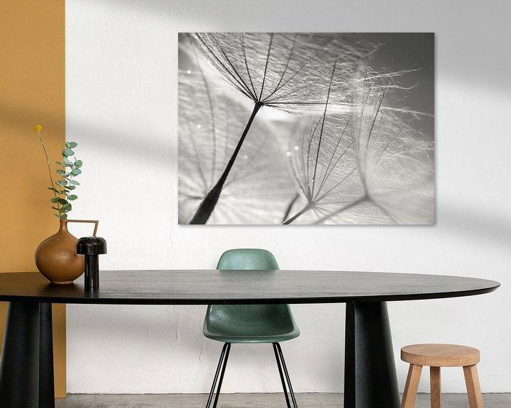 Sfeerimpressie: Paardenbloem Zwart-wit van Julia Delgado