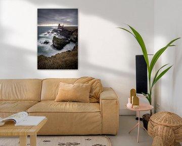 Birds and Icelandic coast. van Remco van Adrichem