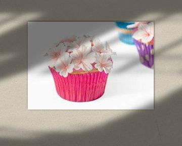Heerlijke cupcakes van Cynthia Hasenbos