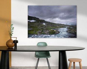 Woeste beek in Noorwegen van Lisa Berkhuysen
