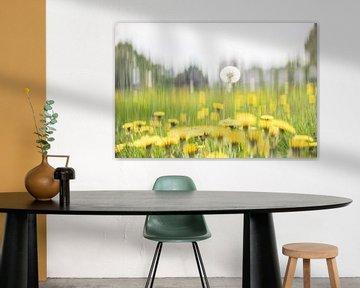 """Uit de serie """"Onderscheiden"""": Paardenbloemen von Adri van Daal  Photo-Art"""