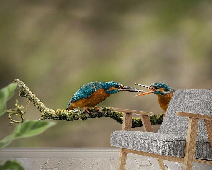 Sfeerimpressie behang: IJsvogel van Freddy Van den Buijs