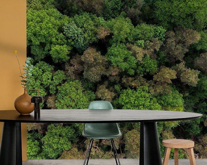 Impression: Vue de dessus des arbres sur Cynthia Hasenbos