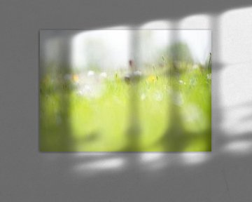 Dromerige opname veldbloemen von Michel Knikker
