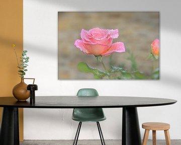 Rose with raindrops van Artelier Gerdah