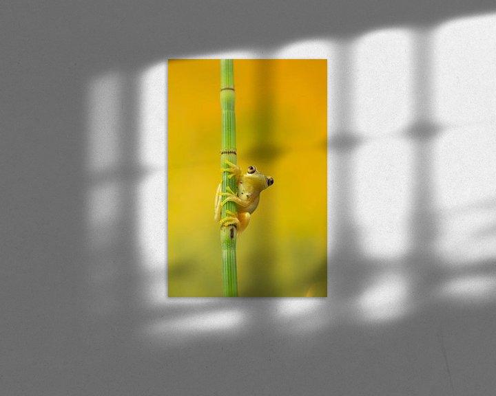 Sfeerimpressie: geel van hanny bosveld