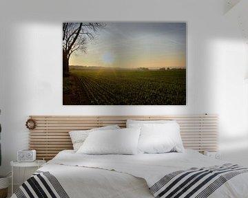 Zonsondergang van MSP Canvas